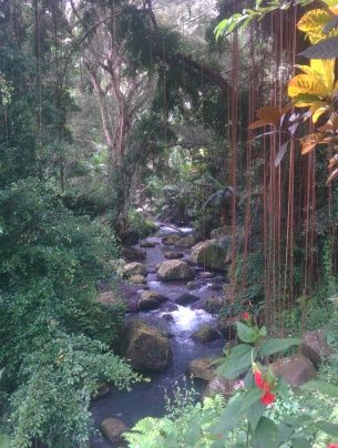 Beautiful stream passing thru the Gunung Kawi