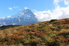 Eiger view