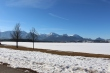 Hopfen am see in winter with the alps in the background